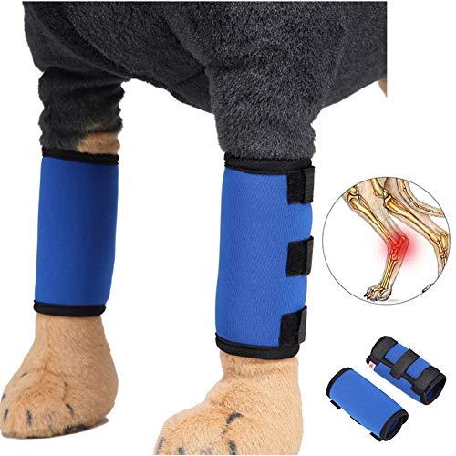 KUOZEN Kniebandage Hund Bandage Hund Hundebeinverband Schmerzlinderung für Hunde Unterstützung für das Hinterbein des Hundes Hundebeinstütze Joint Aid Hunde Blue,l