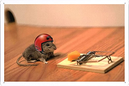 Tin Poster Sign 8'x12' - Mouse Cheese Mouse Trap Helmet Funny Situation 52866 Produced by Petpetpet