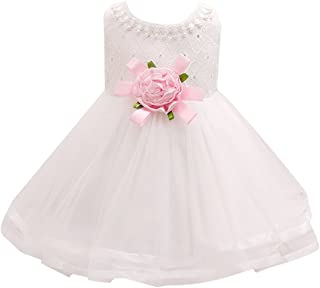 Zhuhaitf 高品質 Newborn Baby Girls Sleeveless Dress Big Flowers Princess Formal Party Wedding Bridesmaid Tulle ドレス for 0-24 Months