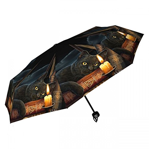Dark Dreams Gothic Fantasy Schirm Regenschirm Taschenschirm schwarze Katze Kater Hexe Kerze witching Hour
