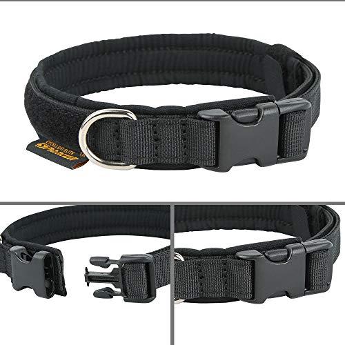 Adjustable Buckle Collar 58  or 34 Little Dog Collar   Pua  Xsmall Small