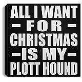 Designsify All I Want For Christmas Is My Plott Hound - Canvas Square Lona Cuadrado 20x20 cm Mural Decor - Regalo para Cumpleaños, Aniversario, Día de Navidad o Día de Acción de Gracias