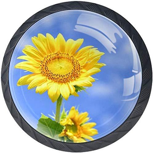 Flowers Landscape Natural Blue Sky 4 Stück Schubladenknöpfe Kommode Möbelknöpfe glas Moebelknauf Griff Garderobe Ziehgriffe Möbelgriff