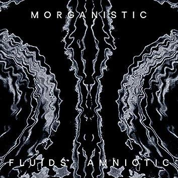 Fluids Amniotic (Remastered)