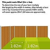 Zoom IMG-2 evergreen scatola del kit di