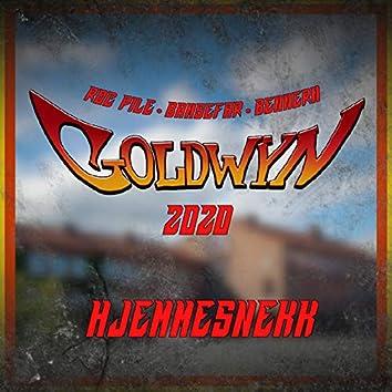 Goldwyn 2020 - Hjemmesnekk