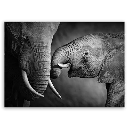 ge Bildet Bild auf Leinwand MIT Sommer Elefanten - schwarz weiß Tier Bilder - 70x50 cm einteilig - direkt vom Hersteller aus Deutschland