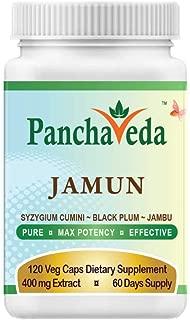 Best jimbu herb plant Reviews