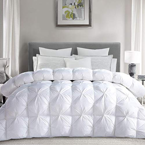 Best thefit goose down comforter kings