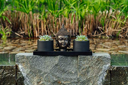 Buddha Statue & Succulent Zen Garden Set- Buddha Head Statue w/ Wooden Display Tray & Stones| Buddha Decor For Home Decor. Beautiful & Peaceful. Great Meditation Gifts.