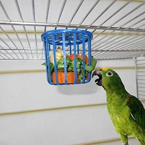 vogel zubehor