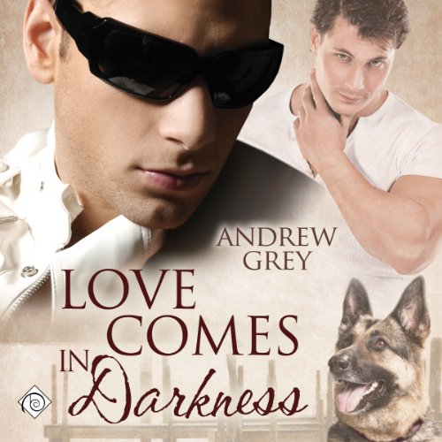 Love Comes in Darkness audiobook cover art
