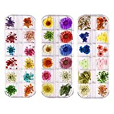 Angzhili ネイル ドライフラワー ドライフラワー 押し花 ネイル パーツ 天然の花で作り カラフル 36種類 3ボックセット透明収納ケース 付き (カラフルA)