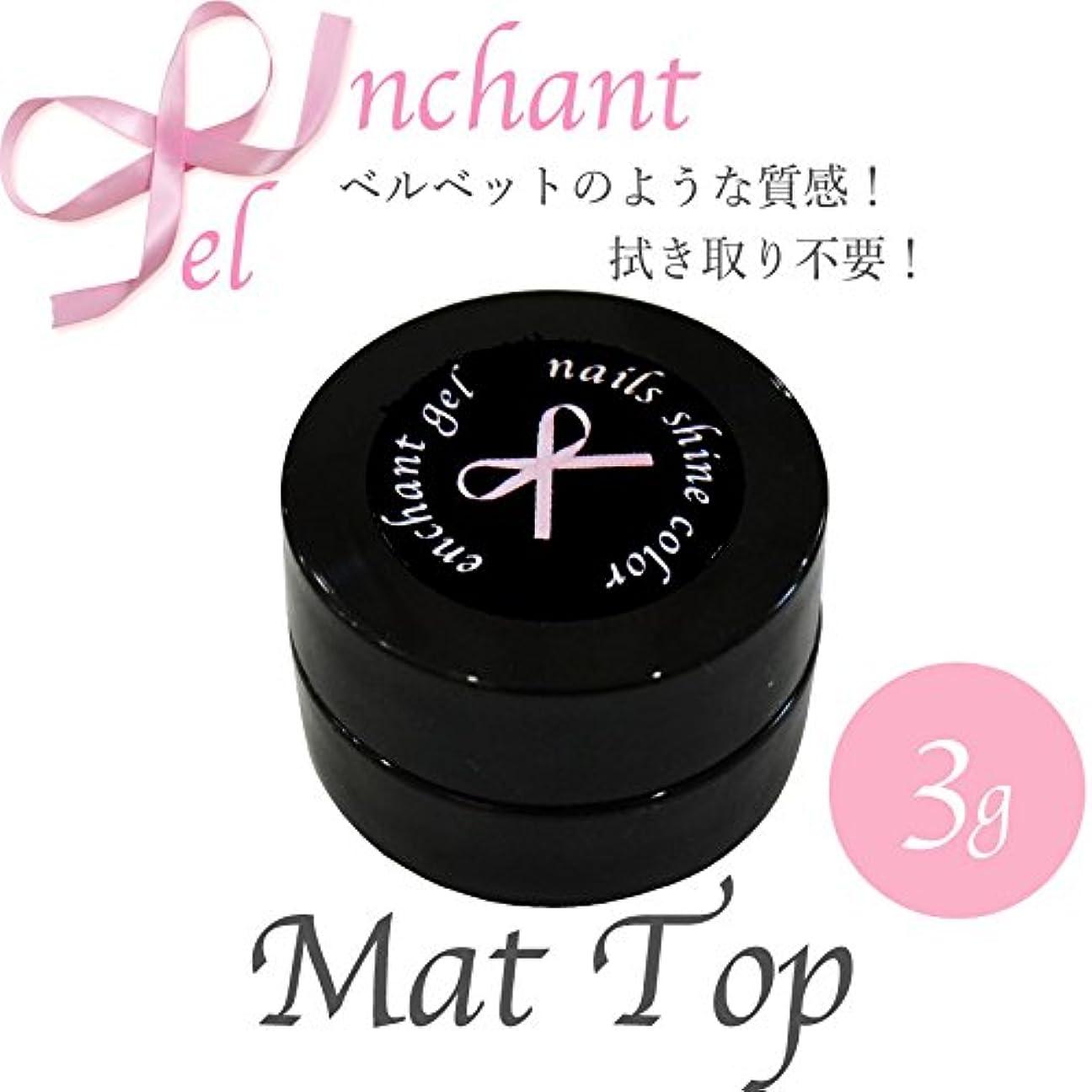 破壊的なプレゼンテーション孤児enchant gel mat top coat gel 3g/エンチャントジェル マットトップコートジェル 3グラム