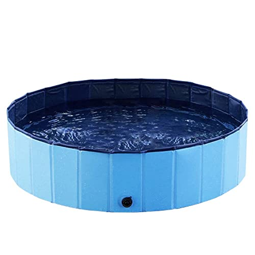 Dog Swimming Pool: Amazon.com