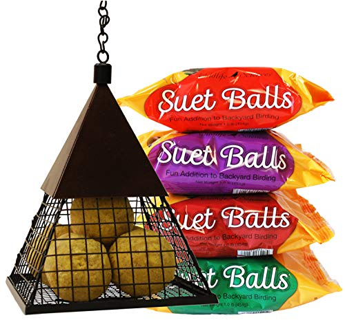 Wildlife Sciences Suet Ball Feeder and Suet Ball Variety Combo Pack | Geo Pyramid Feeder with 16 Suet Balls