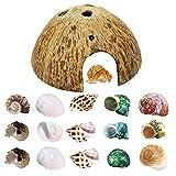 Hermit Crab Shell Growth Seashells 15 PCS (7 Types) Natural Coconut Shells Hut for Fish Tank Decor Hide Reptile Hideouts