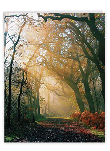 Big Thank You Greeting Card with Envelope 8.5 x 11 Inch - 'shining Through' Sun Light Pouring Down From the Sky to Nature, Leaves and Trees - Personalized Thanks J1735ATYG