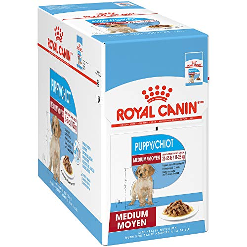 Royal Canin Size Health Nutrition Medium Puppy Chunks in Gravy Pouch Dog Food, 4.9 oz (Pack of 10)