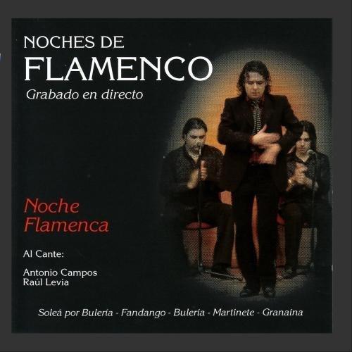 Noches de Flamenco - Noche Flamenca by Raul Levia, Juan Cortes, Jose de Mode Antonio Campos
