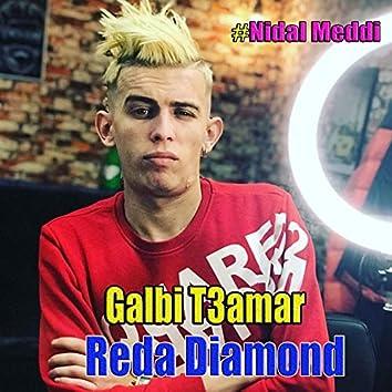 Galbi T3amar