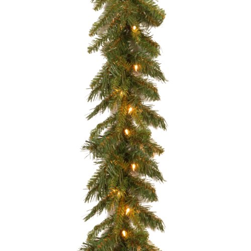 National Tree 9 Foot by 10 Inch Tiffany Fir Garland with 50 Clear Lights (TF-9ALO-1)