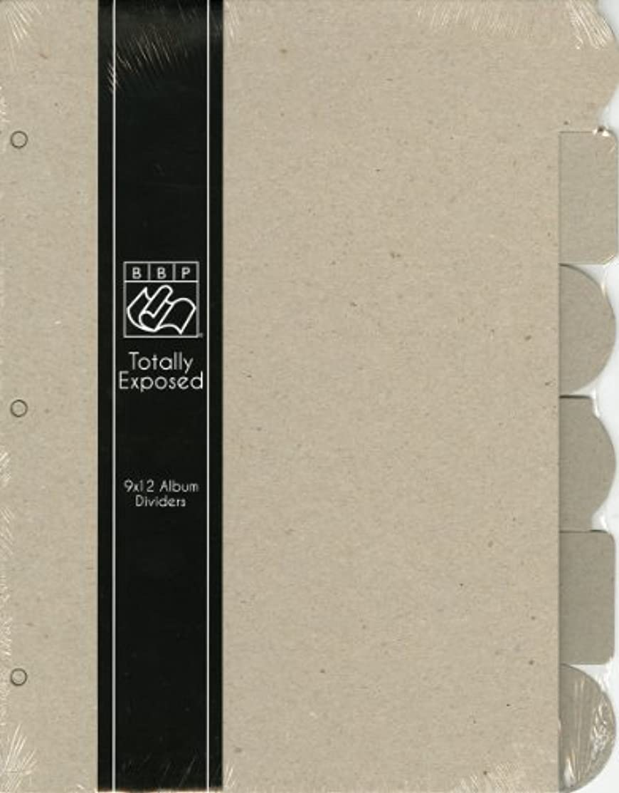 Bazzill Totally Exposed Album Chipboard Divider Pages 9
