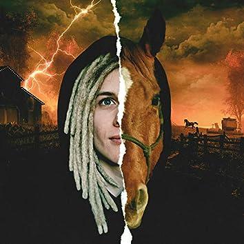 Я лошадка