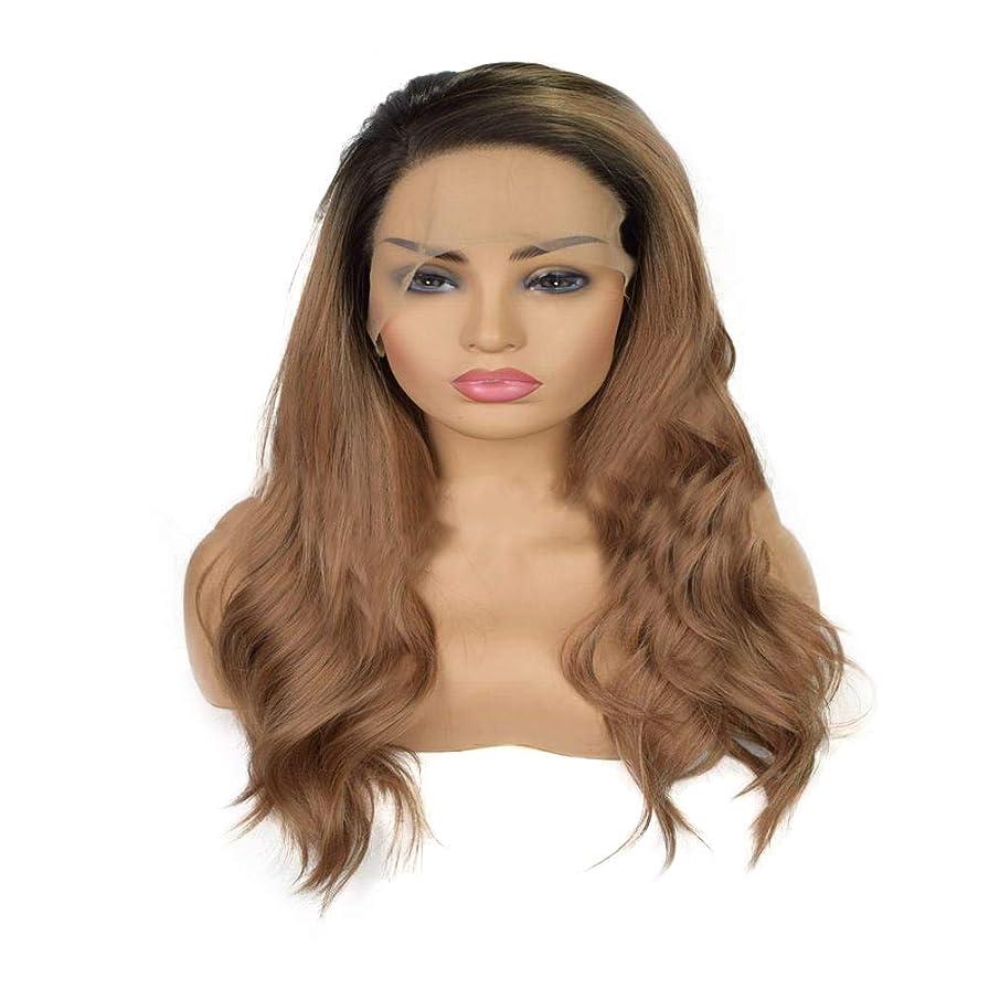 エキサイティングバッフル沼地Yrattary 混合色の長い巻き毛のフロントレースかつらレディブラウンハーフハンドフックかつら合成髪のレースのかつらロールプレイングかつら (色 : ブラウン)