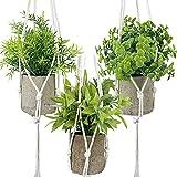 3 Plantas Artificiales en Maceta (Eucalipto Artificiales, Romero, Hoja de Arce) con 3 Macramé Planta, Plantas Pequeña Falsas Plástico Adornos para Decoración Estantería Casa Oficina Balcón