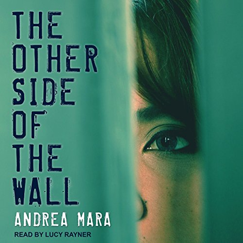 The Other Side of the Wall cover art
