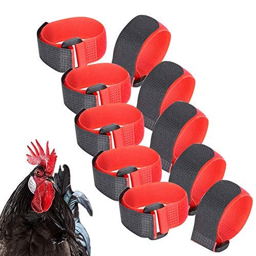 Rehomy Halsband für Hühner, Hahn, Geräusche, Halsband, Haustier, Hühner, verhindert, dass Hühner schreien und störende Nachbarn