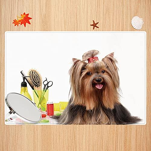 Alfombra de baño Antideslizante,Yorkie, Yorkshire Terrier con Elegante Equipo de peluquería Espejo Tijeras Decorativas, Marrón os Apto para Cocina, salón, Ducha (50x80 cm)