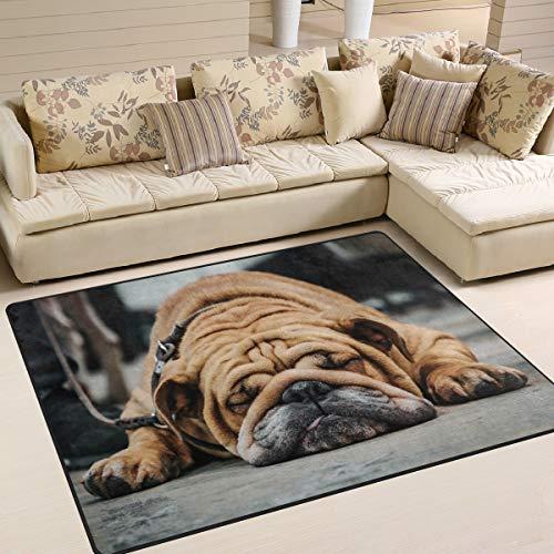 Use7 - Alfombra vintage con diseño de bulldog inglés para dormir en el suelo, 160 cm x 122 cm