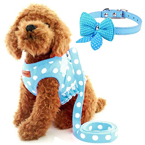 Cute Small Dog Harness, Ladies Polka Dots Dog Vest Harness Set with Pink Leash and Bowknot Collar, 3 in 1 Girl Style Vest Harness Set for Puppy and Cat (S (Chest: 10 - 12