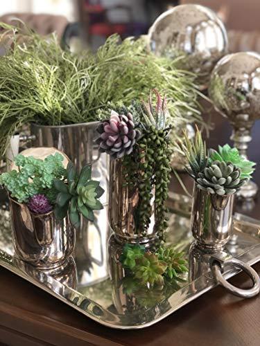 Miltonson Artificial Succulents-16 Pack