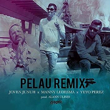 Pelau (Remix)