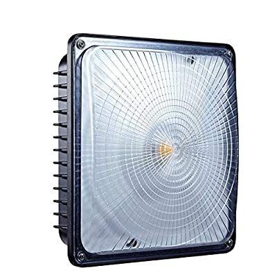 LEONLITE LED Canopy Light FIXTURE
