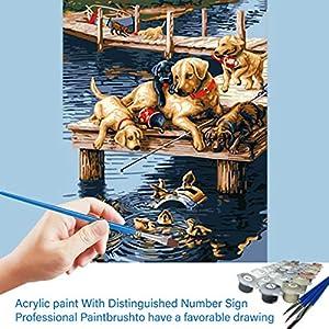 DIY Malen nach Zahlen-Ölgemälde Geschenk für Erwachsene Kinder Malen Nach Zahlen Kits-Ohne Rahmen-Home Haus Dekor -Welpe Horse 40 * 50 cm
