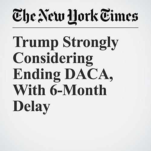Trump Strongly Considering Ending DACA, With 6-Month Delay copertina