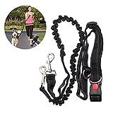 NUOLUX Mains libres Running Dog plomb, ceinture réglable ceinture idéal pour faire du Jogging randonnée à pied, harnais pour chien laisse plomb saut à l'élastique pour la course