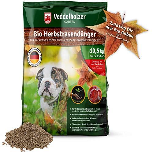 Veddelholzer -   Bio