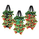 Nicheo 3 Pcs 3 Gallon Hanging Strawberry Planter, Hanging Aeration Planter for Strawberry, Tomato and Hot Pepper, Strawberry Grow Bag, Upside-Down Tomato Planter, Vegetable Planting Bags with Holes