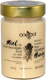 ONEROOT Canadian Raw Wildflower Honey (500g)