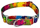 Country Brook Petz | Martingale Dog Collar - Groovy Collection
