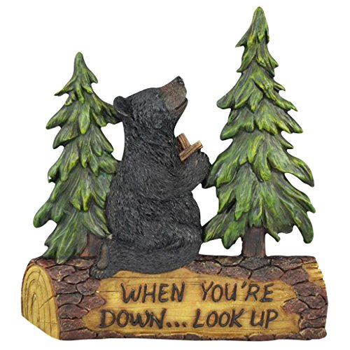 Black Bear Decor for Home - Cabin Decor Wall Hanging Home Gifts for Family - Wall Plaques with Sayings Christian Religious Gifts Bear Wall Hanging - Praying Black Bear - When You're Down... Look Up