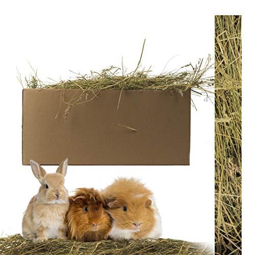 Inter Flowers GmbH Echtes Wiesenheu/Stroh - Naturprodukt für Ihre Haustiere - Kaninchen, Hamster, Meerschweine und Nager Aller Art - frische und hohe Qualität in Plastikfreier Verpackung (Heu 3 kg)