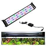Hengda 22 W LED Luz Acuario, Lámpara de Espectro Completo, Luz Impermeable para Acuario de Agua Dulce, 75-95 cm
