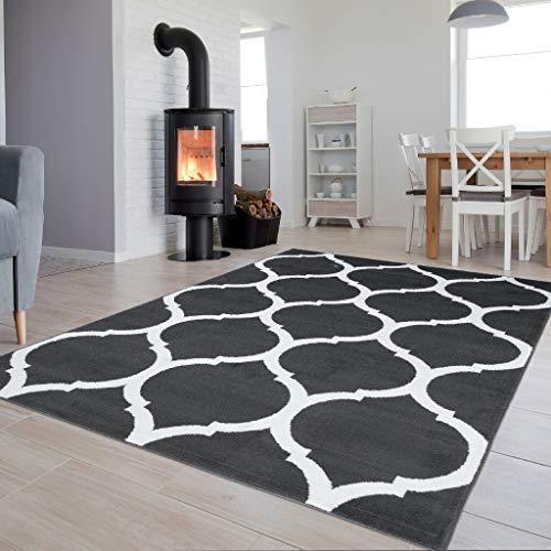 Tapiso Luxury Teppich Kurzflor Modern Marokkanisch Geometrisch Gitter Muster Dunkelgrau Weiss Wohnzimmer Jugendzimmer ÖKOTEX 160 x 220 cm