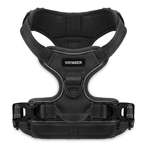 Voyager by Best Pet Supplies -Dual-attachment No-Pull Adjustable Harness with 3M Reflective Technology, (Black, Medium)